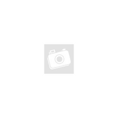 BIANCHI OLTRE XR4 Full Dura Ace Compact 11sp 50/34 Racing Speed 55T Tubular kerékpár